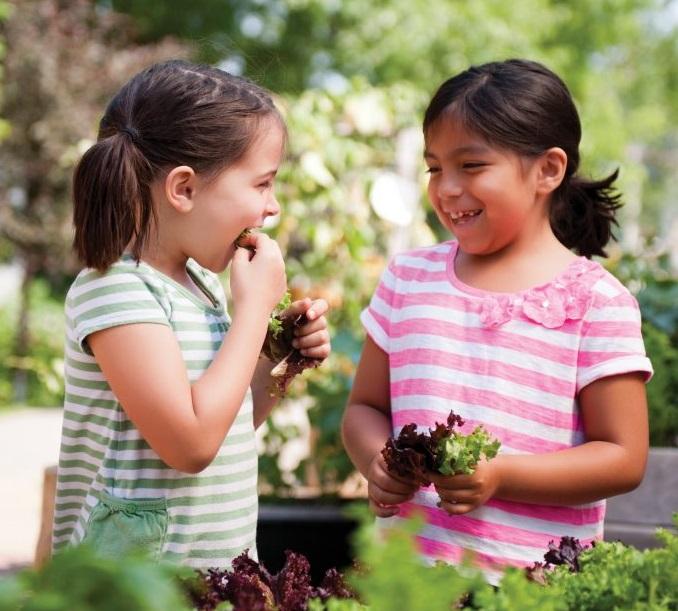 Social And Emotional Development Next >> Raising A Generation Of Nurturers Social Emotional Development In