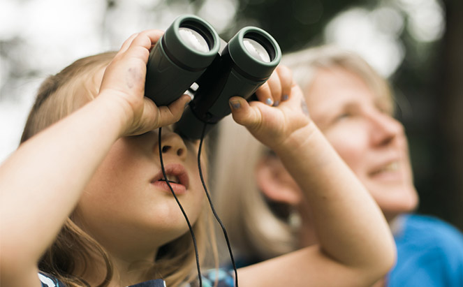 Tools for Close Observation